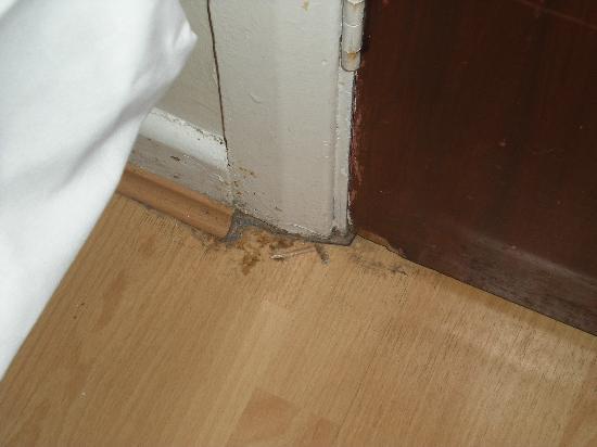 Belgrave House Hotel London Victoria: crud near the bedroom door