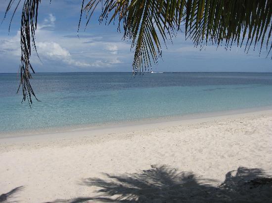 Henry Morgan Beach Resort: spiaggia henry morgan