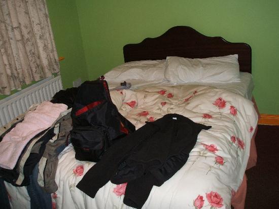 Randy Leprechaun Hostel: Double Room (bath was down the hall)
