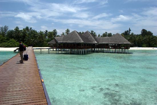 Medhufushi Island Resort: over-water dining pavilions