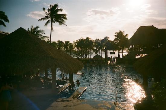 Flamingo Beach Resort And Spa: Pool 2