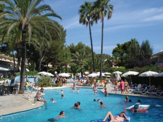 Cala Ratjada, Spania: La piscine du Pinos park, au milieu des palmiers et des pins est sublime...