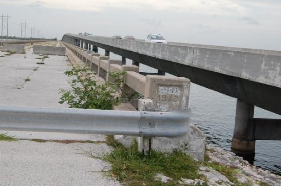 Ramrod Key, FL: Keys bride