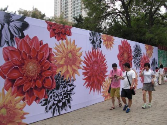Bilde fra Shenyang