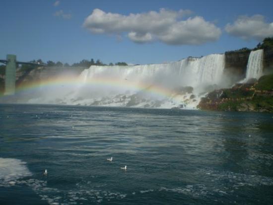 Niagara Falls, NY: rainbow