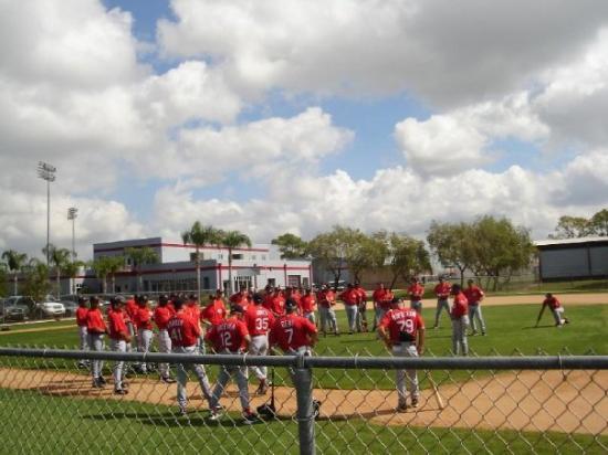 Sarasota Reds - Sarasota Florida