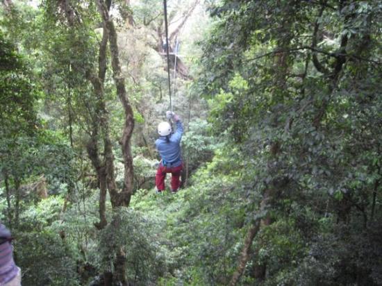 Bilde fra Monteverde