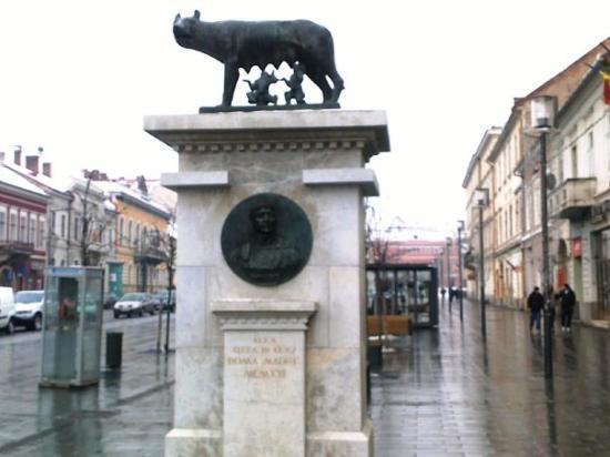 Cluj-Napoca Picture