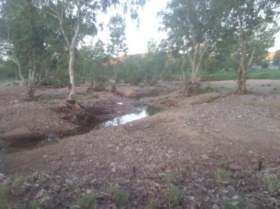 Alice Springs, Australia: The mighty Todd River with some water in it!