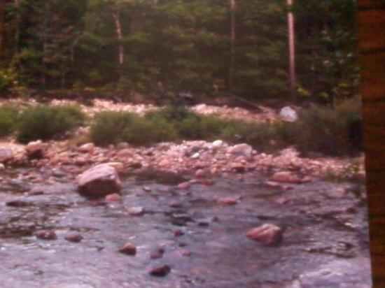 Franconia, Nueva Hampshire: Yea I fell in the river