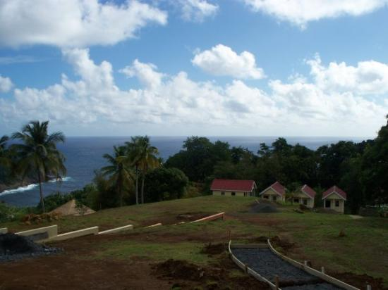 Dominica: The hill we all trekked 1 million times!!