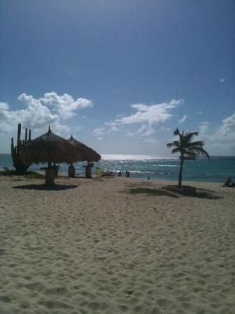 Oranjestad, Aruba: Arashi Beach, Aruba