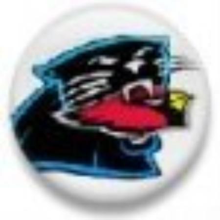 Charlotte, NC: Panther eats Cardinal 1-10-08