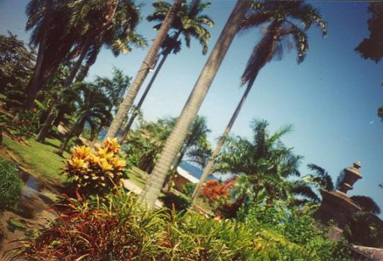 Ocho Rios, Jamaica: .........Beautiful Jamaica!!!!!!