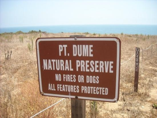 Point Dume State Beach and Preserve: Point Dume Beach.