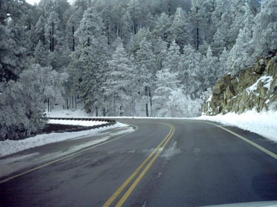 Bilde fra Mount Lemmon