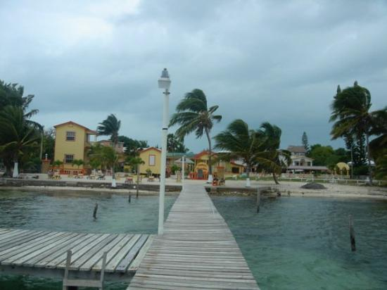 Belize by, Belize: Caye Culker. They like to say here if you move too fast, you'll get a ticket, mon.