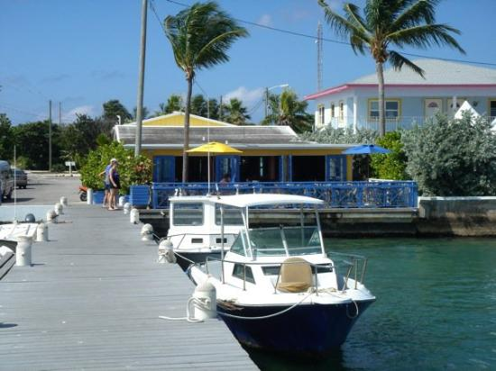 Grand Cayman: Dock out by Sting Ray City where the fishermen clean their fish. Huge Tarpon right in the shallo