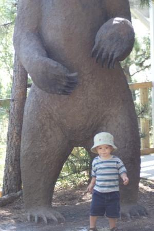 Cheyenne Mountain Zoo: Watch out for that bear!