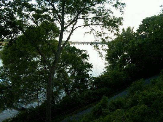 Along the maumee