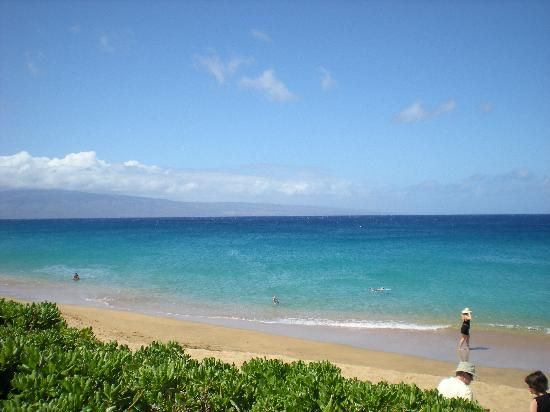 Royal Lahaina Resort: beach in front of hotel! favorite on maui!
