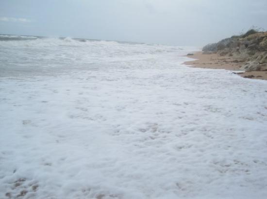 Bilde fra Ormond Beach