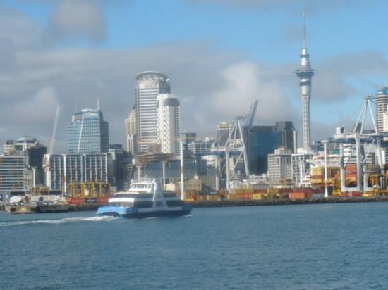 Sky Tower: Auckland Skyline från sjösidan.