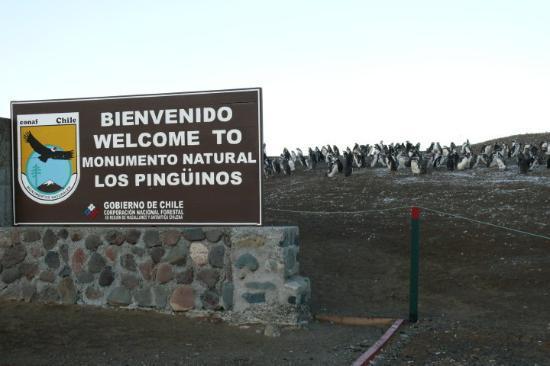 Bilde fra Solo Expediciones