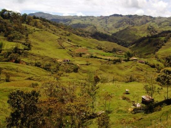 Medellín, Colombia: The Farm