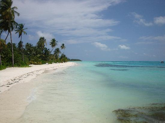 Meeru Island Resort & Spa: The beautiful beach