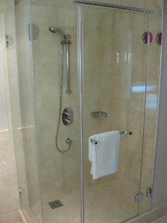 InterContinental Hotel Warsaw: 3108 shower