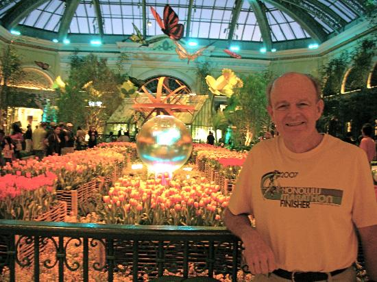 Bellagio Conservatory & Botanical Garden: Tulips in the Spring