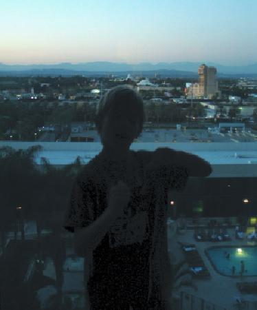 Hilton Anaheim: we watch the sun set over Anaheim - can see pool