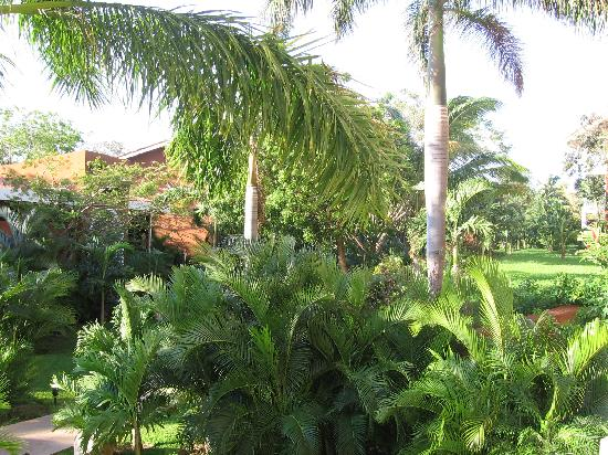 Occidental Tamarindo: The gardens