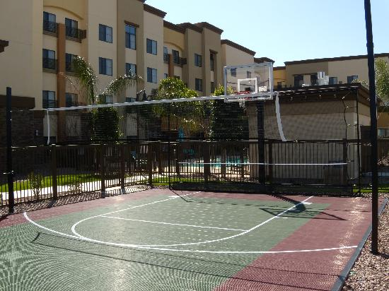 Residence Inn Phoenix NW/Surprise: Basketball / Volleyball