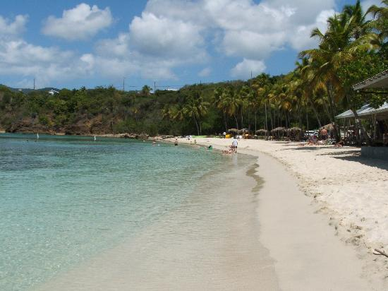 Water Island Adventures: Picture of Honeymoon Beach where the ride ends