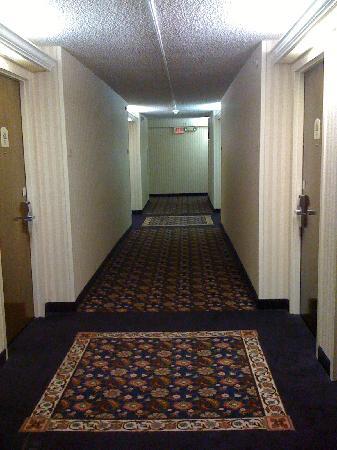 Holiday Inn Washington - Capitol: Hallway (tired dated decor)
