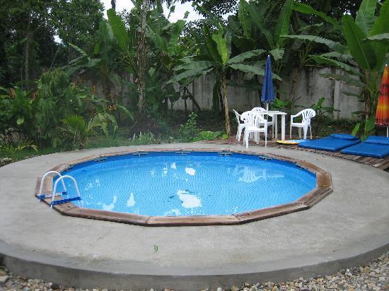 Yurapamba Jungle Resort: Refreshing pool