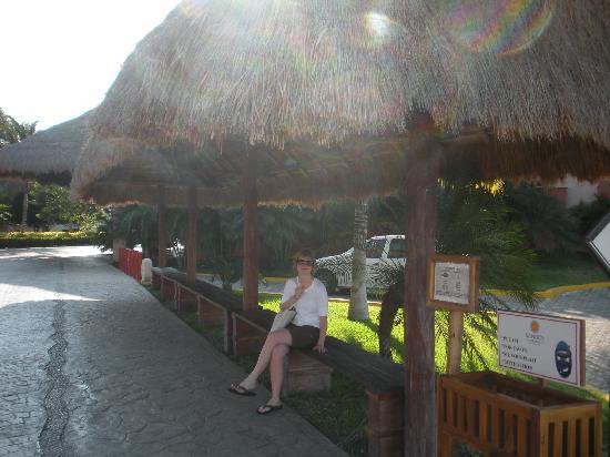 Sandos Caracol Eco Resort: Bus stop at the resort