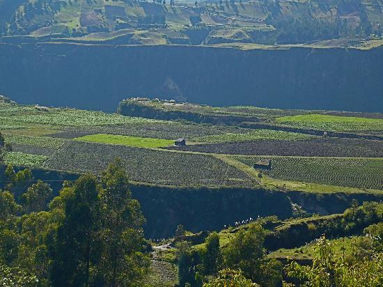 Black Sheep Inn Ecolodge: Plateau view from Black Sheep Inn