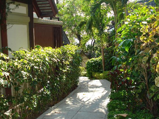 Centara Villas Phuket: Pathways between groups of villas