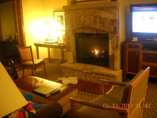 Valdoro Mountain Lodge: Living Room