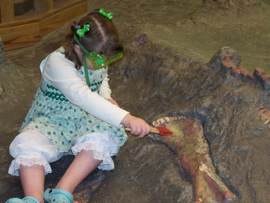 Carnegie Museum of Natural History: Keeping kids busy, but with no results