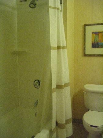 San Diego Marriott Del Mar: bathroom left--  basic but no complaints