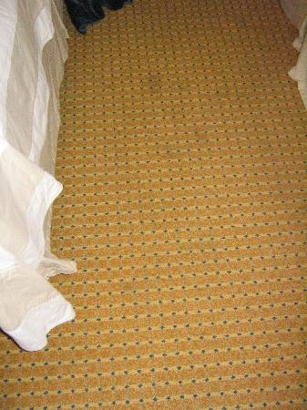 San Diego Marriott Del Mar: dirty carpet between the beds