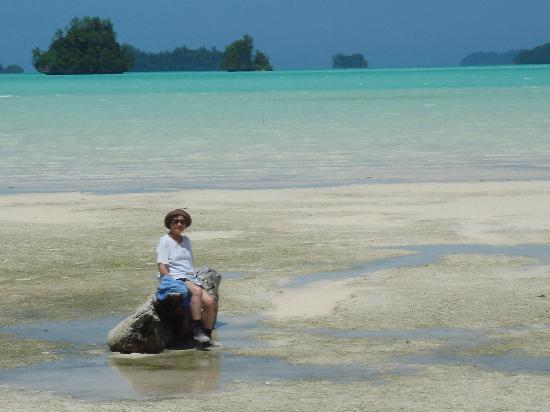 Airai Water Paradise Hotel & Spa: Island