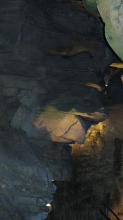 Howes Cave, Estado de Nueva York: witch's face (looking to the right)