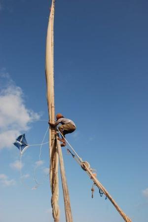 Lamu Island, Kenya: experienced dowl sailor