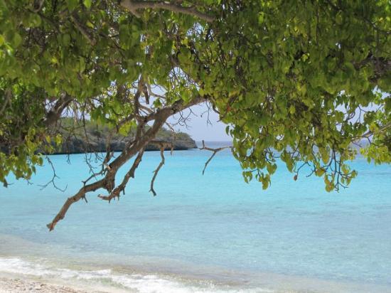 Willemstad, Curaçao: Sjoen he!!!