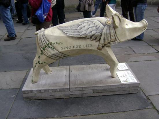 One of 24 pig sculptures on the streets of Bath, UK.